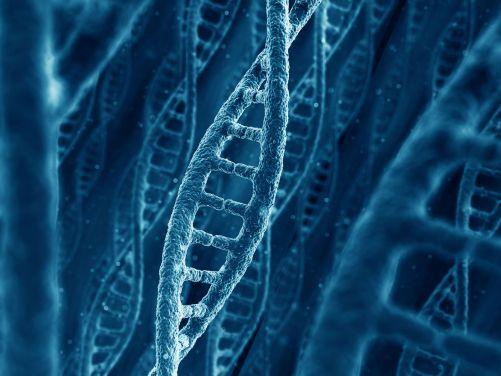 Animace známé dvoušroubovice DNA (Zdroj Shutterstock)