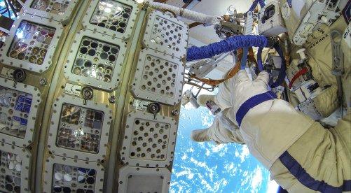 V těchto přihrádkách na vnější straně ISS byly vystaveny po jeden a půl roku kosmickému prostředí nejrůznější organismy od spolupracujících partnerských organizací (© Photo ESA/ROSCOSMOS)