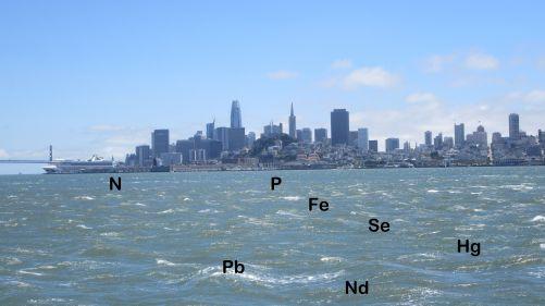 San Francisská zátoka. I zde mořská voda obsahuje nejen sůl... (foto MD)