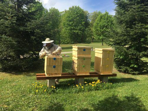 Včelí úly budou návštěvníkům temelínského zámeckého parku volně dostupné (zdroj ČEZ)