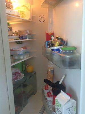 Lednice, otevři se! A kup mi něco dobrého! (foto MD)