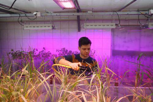 Uzavřená laboratoř umožňuje kontrolované a efektivní pěstování mykorhizních hub (zdroj Symbiom)