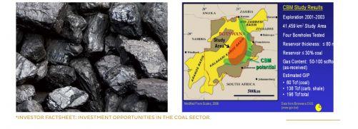 Úryvek z materiálu Botswana Investment and Trade Centre pro potenciální investory do uhelného průmyslu země (zdroj BITC Investor Factsheet)