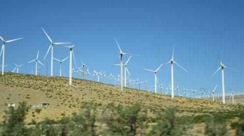 Kalifornské větrné elektrárny (ilustrační foto B. Dufek)