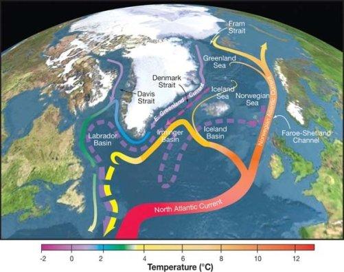 Znázornění atlantických povrchových a hlubokomořských proudů (AMOC ) (zdroj Wikimedia Commmons, CC)