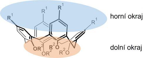 Struktura kalixarenu (zdroj Ústav fyzikální chemie J. Heyrovského)