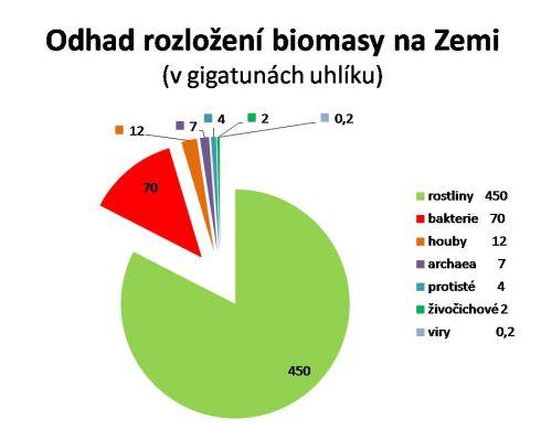 Odhad rozložení celkové biomasy na Zemi (dle zdrojových údajů nakreslila MD)